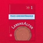 """Praxis Gemeindepädagogik """"LebensAlter"""""""